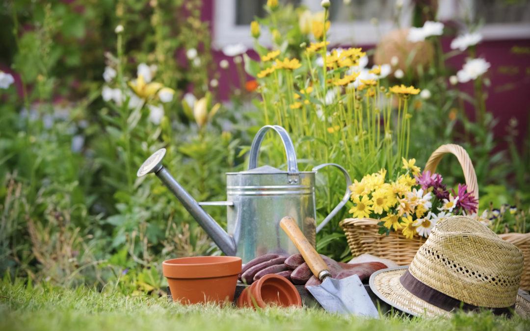La santé mentale est dans le jardin