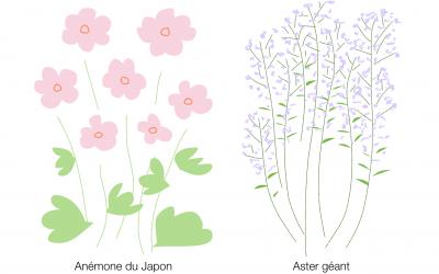 Des fleurs en automne